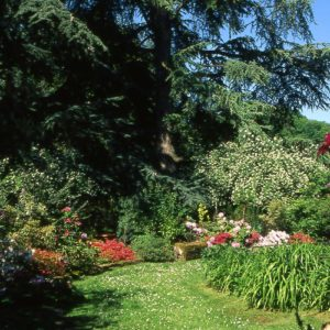 gallery-tour-giardino-2